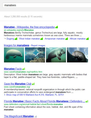searching for <i>manatees</i>