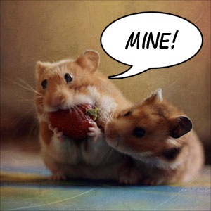 (<a href=http://stacyd.deviantart.com/art/Greedy-Hamster-II-167249154>photo source</a>)
